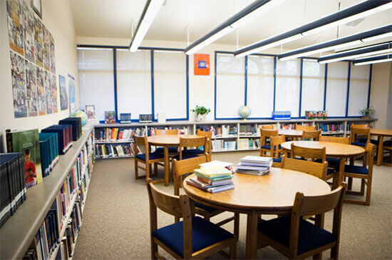 Library-division-11